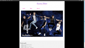 One Direction Site